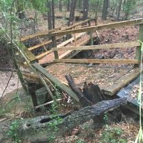 Defunct bridge over Briar Creek